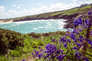 walk the coastal path