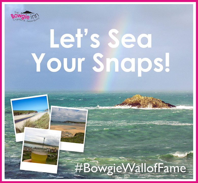 Bowgie Let's Sea Your Snaps